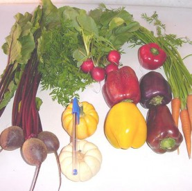 Mini legumes variados