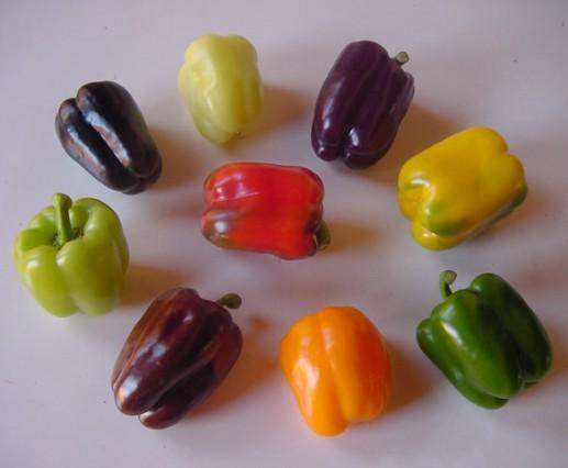 Pimentões Coloridos